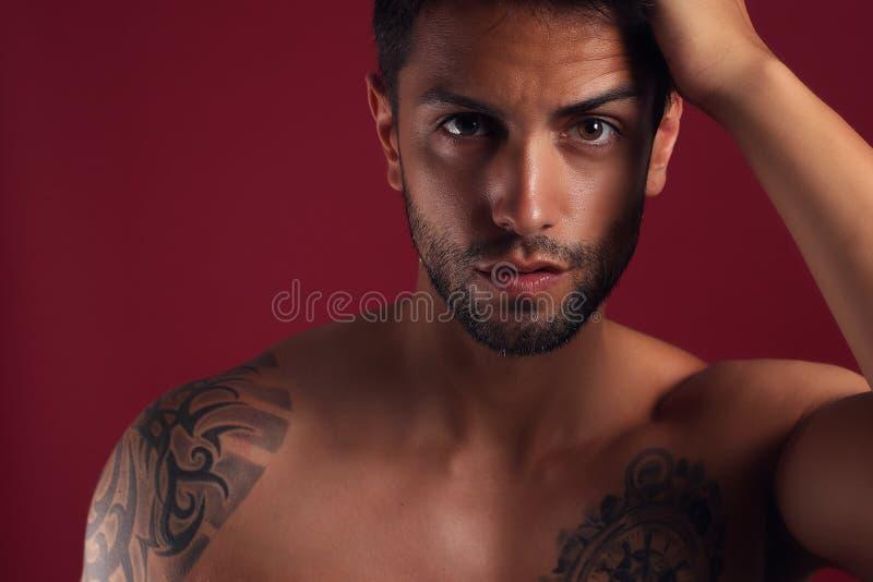 Sexig closeupstående av den stiliga topless manliga modellen med härliga bruna ögon royaltyfri foto