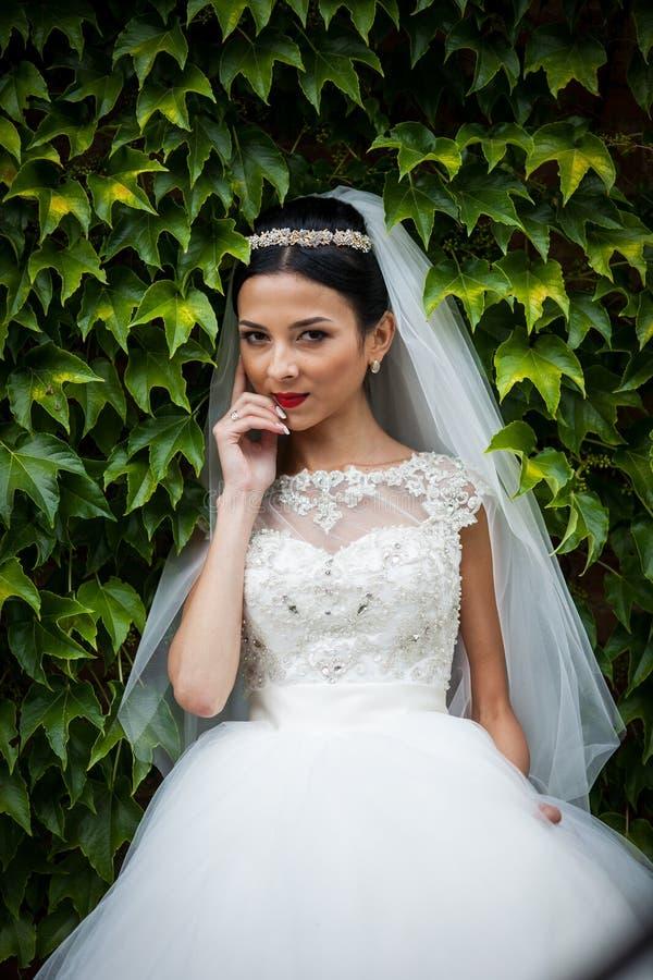 Sexig härlig brunettbrud i den vita klänningen som poserar omgivet b royaltyfri fotografi