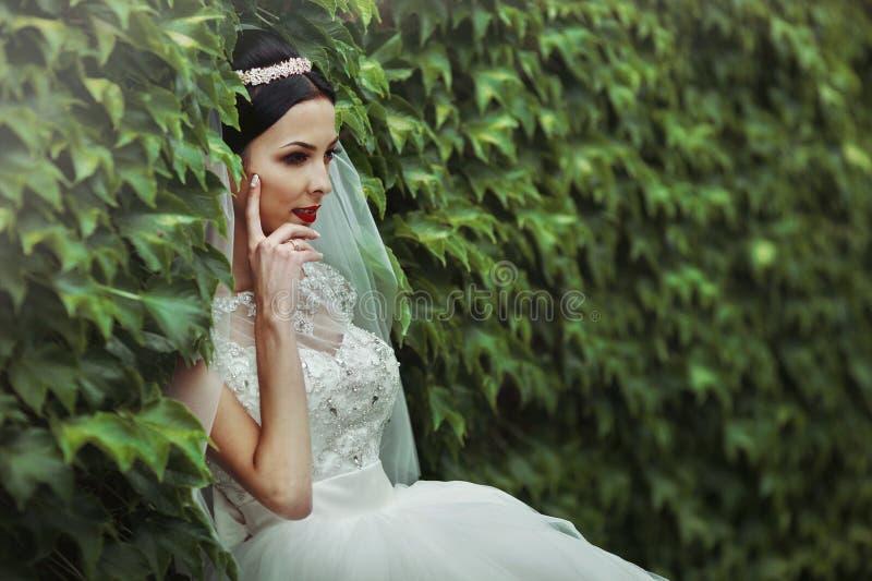 Sexig härlig brunettbrud i den vita klänningen som poserar omgivet b arkivfoto