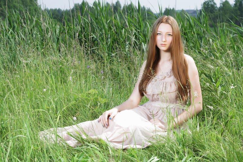 Sexig härlig gir på gräs arkivfoton