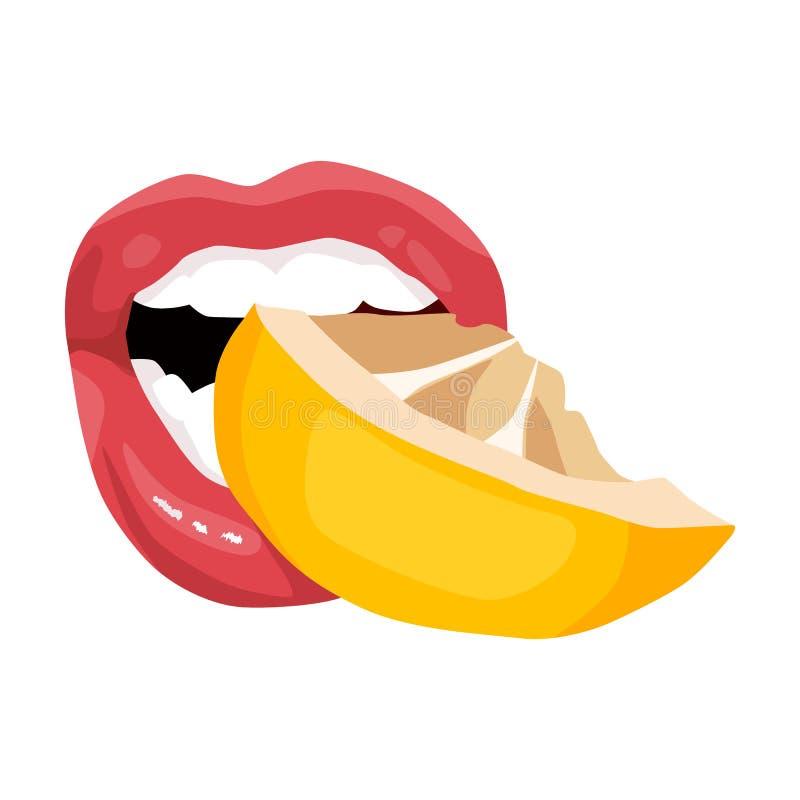 Sexig kvinnors citron för munsmaker Attraktiva kvinnliga röda kanter royaltyfri illustrationer
