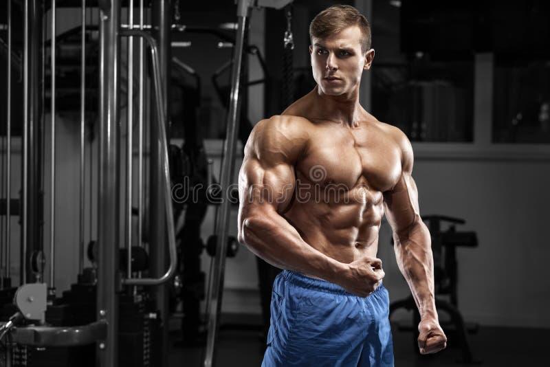 Sexig muskulös man i idrottshall Stark manlig torsoabs, genomkörare arkivfoto