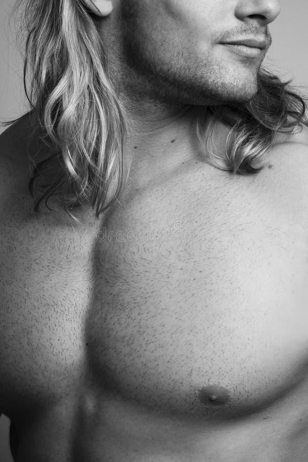 sexig torso arkivbild