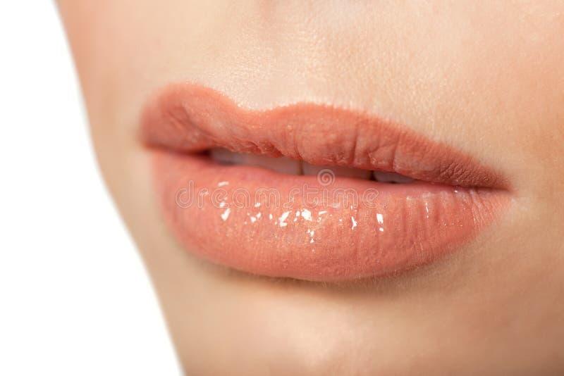 sexiga kanter Detalj för skönhetLipgloss makeup royaltyfri fotografi