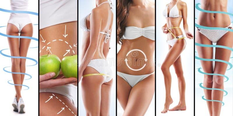 Sexiga kvinnliga kroppar och frukter på vit royaltyfri fotografi