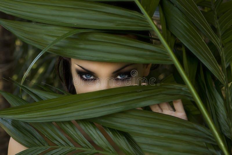 Sexigt härligt kvinnanederlag bak palmbladen Härlig st royaltyfria bilder