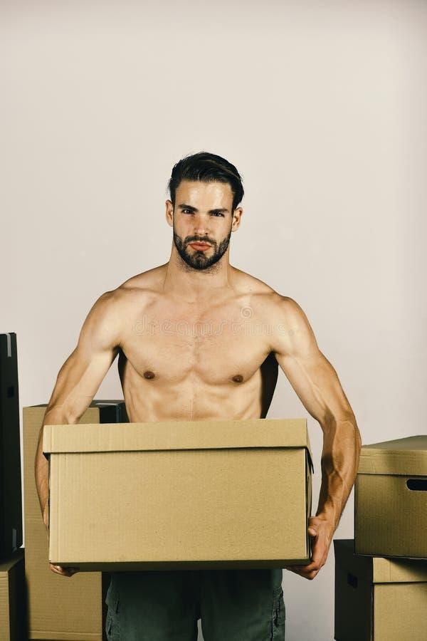 Sexualidad y mudanza en concepto: machista barbudo entre las cajas imagen de archivo libre de regalías
