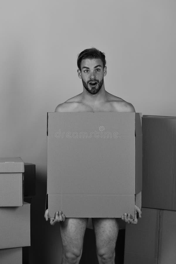 Sexualidad y mudanza en concepto Machista con la barba y cubierta sorprendida misma de la cara con la caja fotos de archivo libres de regalías