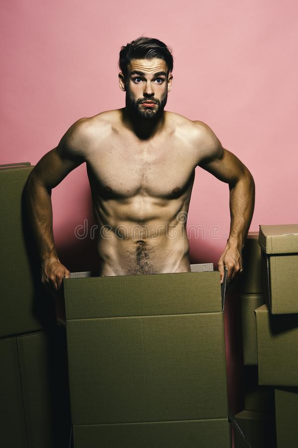 Sexualidade e conceito da construção Indivíduo com o torso despido muscular imagens de stock royalty free