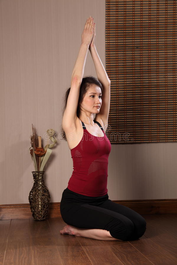 Download Asian Woman In Keep Fit Exercise Routine Stock Image - Image: 18106025