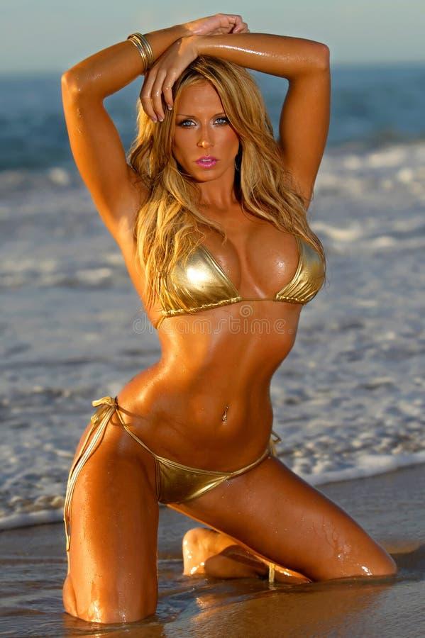 Sexy bikinimeisje royalty-vrije stock foto
