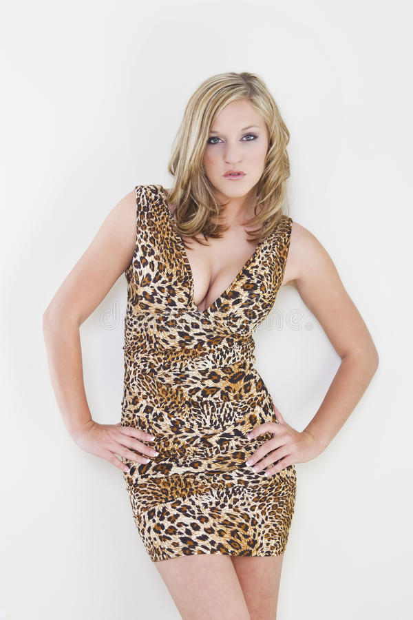 Blonde Model. A blonde model with a leopard print dress against a white background {usage stock images