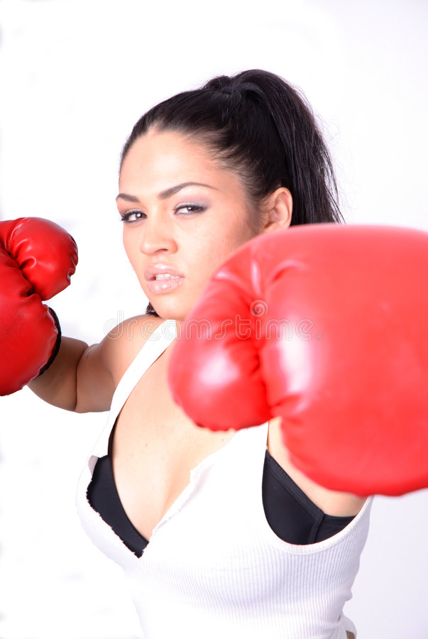 Download Boxer stock image. Image of boxer, power, fitness, white - 7259517