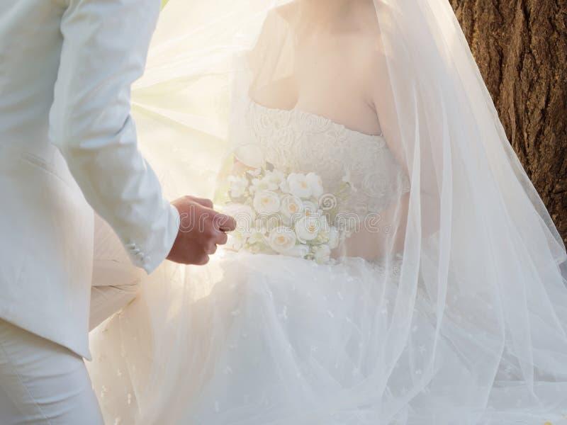 Sexy Braut im weißen Heiratskleid, das auf der Wiese in der Hand wartet den Kuss ihres Bräutigams oder auf Umarmung, schöne weiße lizenzfreies stockbild