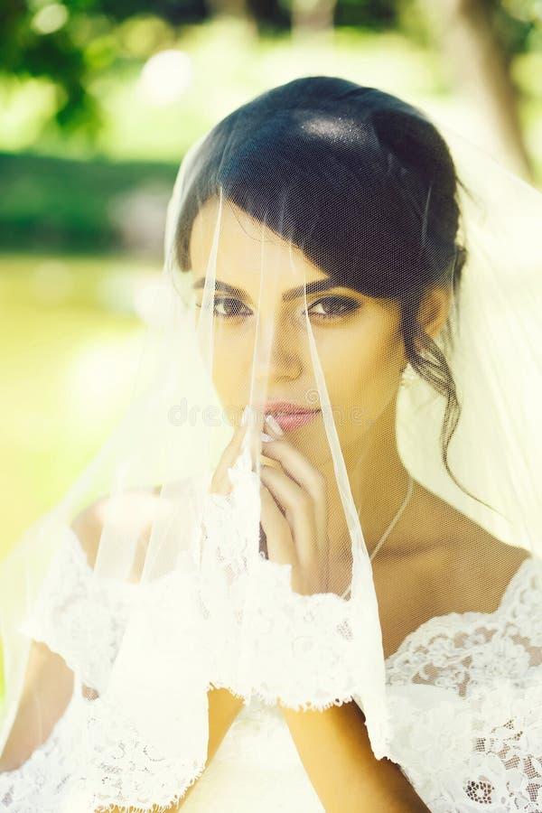 Pretty bride under veil royalty free stock image