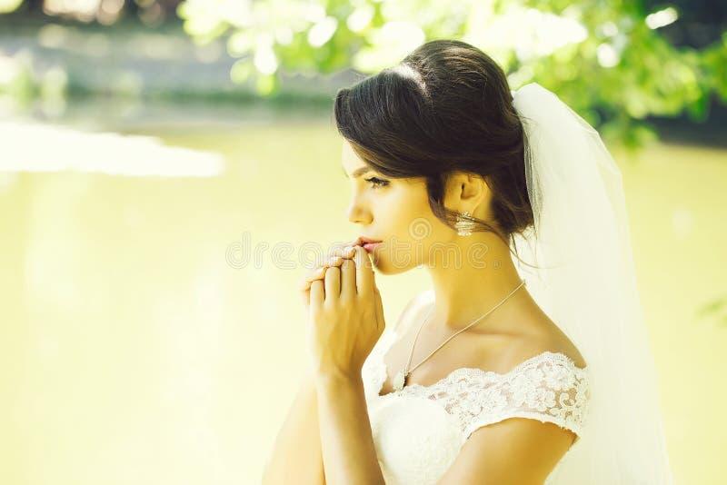 Pretty bride in veil stock photos