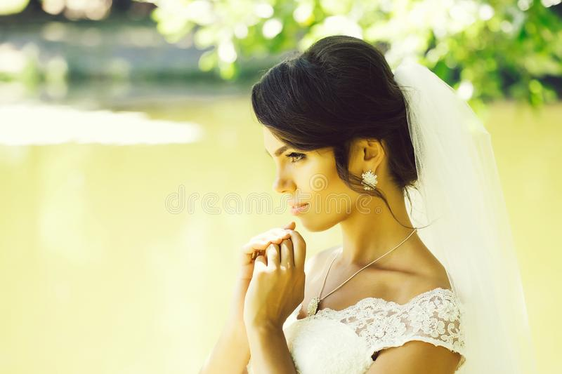 Pretty bride in veil royalty free stock photography