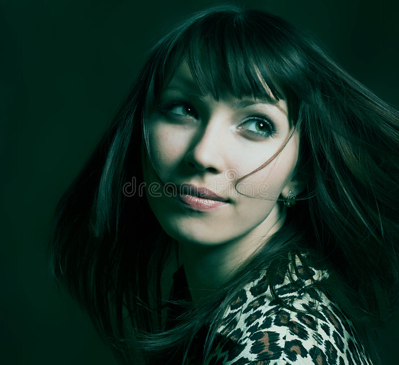 Download Brunette Girl Royalty Free Stock Photography - Image: 2305397