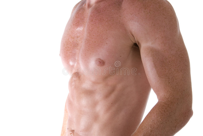 chest. royalty free stock image