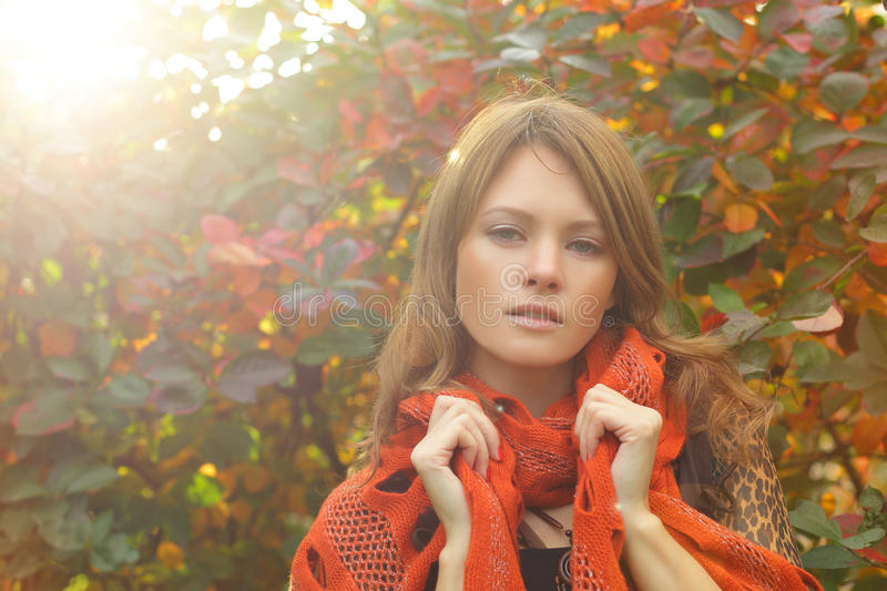 Download Fashion model, portrait stock image. Image of park, holiday - 27095017