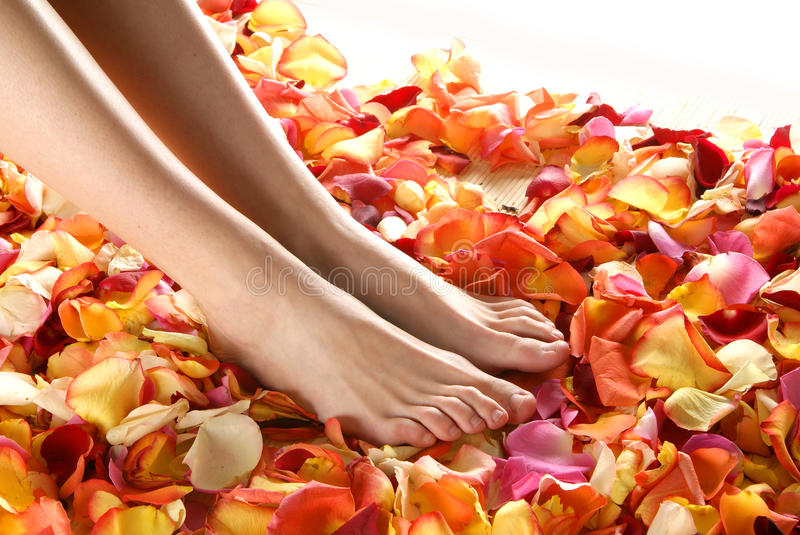 female feet in fallen rose petals stock photos