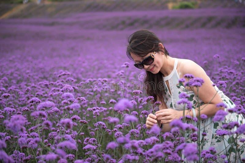 Sexy Frau im Lavendelfreizeitpark lizenzfreies stockfoto