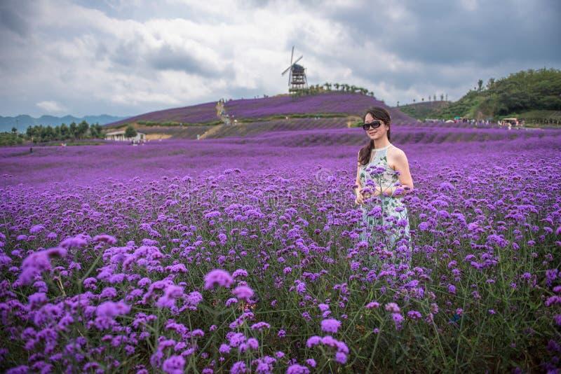 Sexy Frau im Lavendelfreizeitpark stockfoto