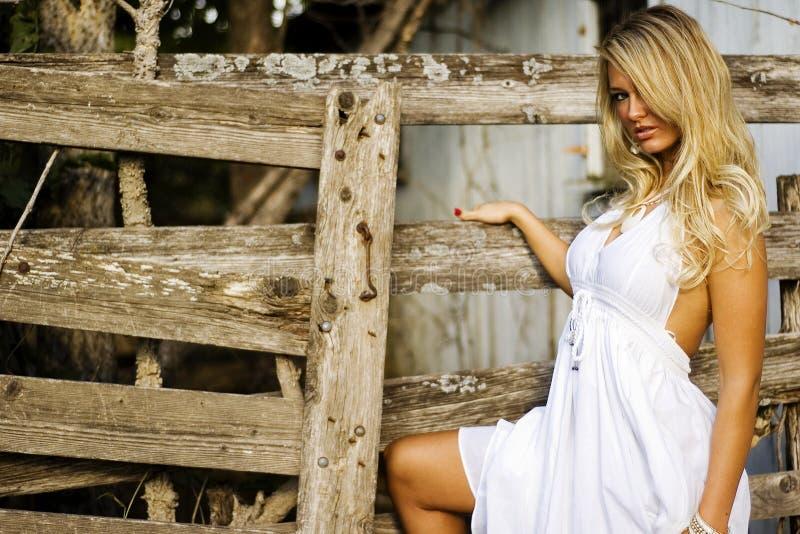Girl - Blonde Fashion Model stock photography