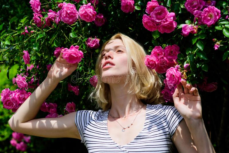 Sexy girl on pink rose background. natural beauty. Spa and skincare. summer and spring park nature. rose flower smell. Parfume. beautiful woman with blonde stock photo