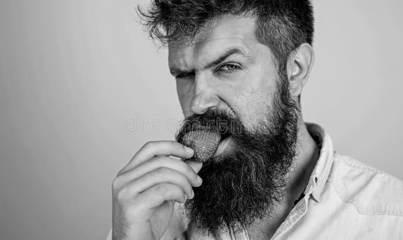 Sexy hipster van het mensen probeert knappe strikte gezicht met lange baard aardbei Hipster geniet van sappige rijpe rode aardbei royalty-vrije stock foto's