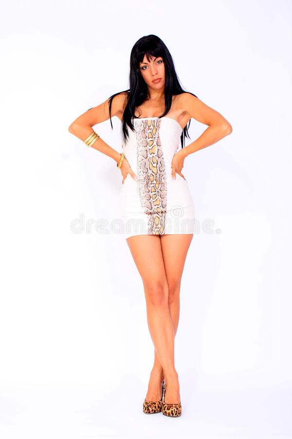 Download Hot Woman Stock Photography - Image: 14560182
