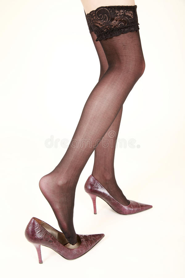legs in stockings royalty free stock photography