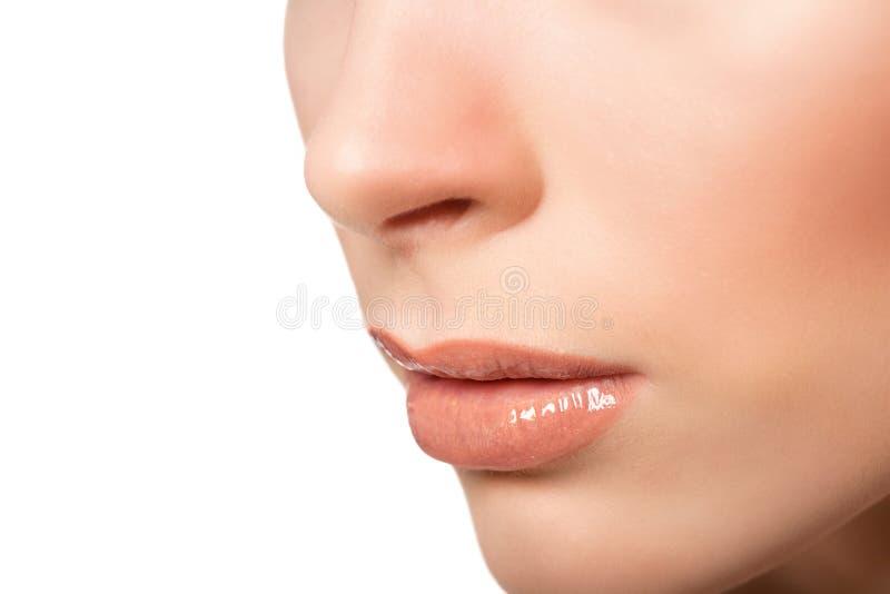 Sexy lippen De Make-updetail van schoonheidslipgloss Mooie Samenstellingsclose-up royalty-vrije stock afbeelding