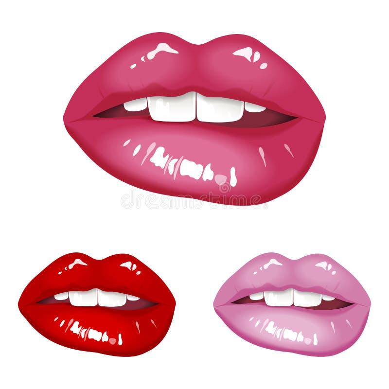 lips stock illustration