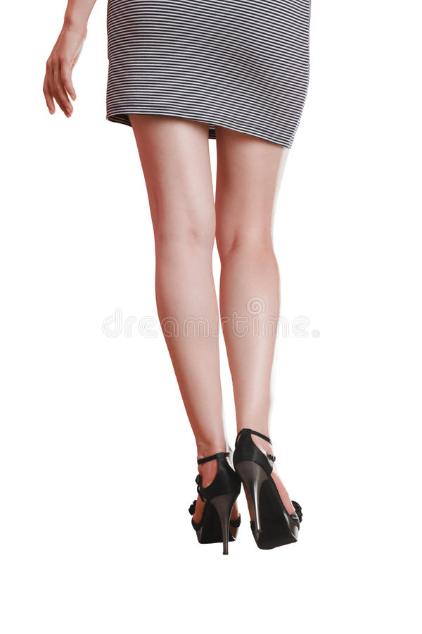 long legs stock images