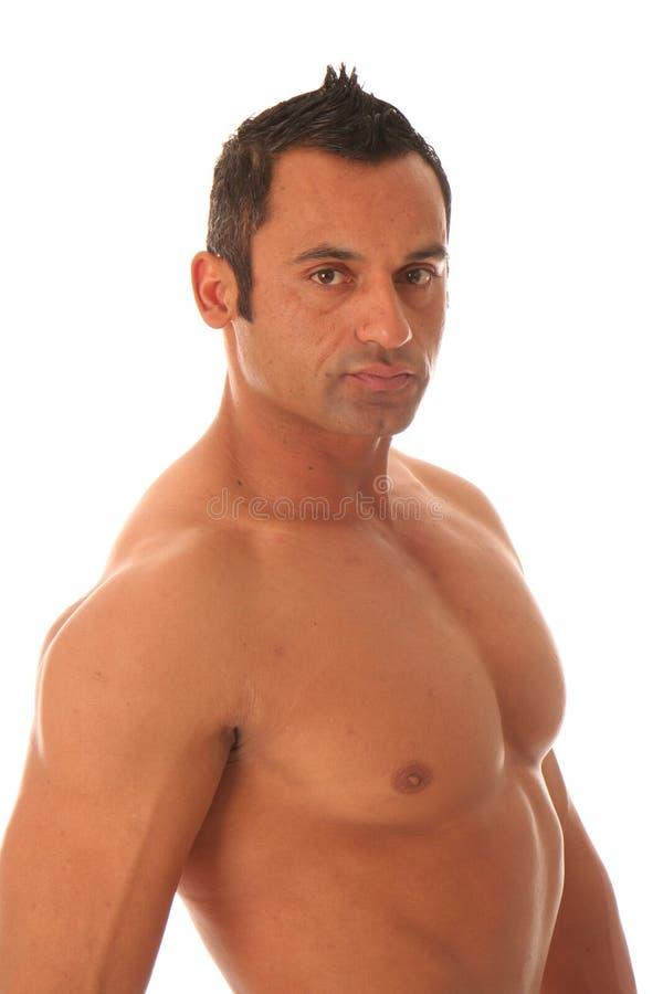 Download Male muscular model stock image. Image of gaze, handsome - 2955191