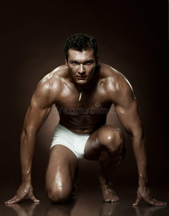 Download Man stock photo. Image of fine, austere, brown, portrait - 21972926
