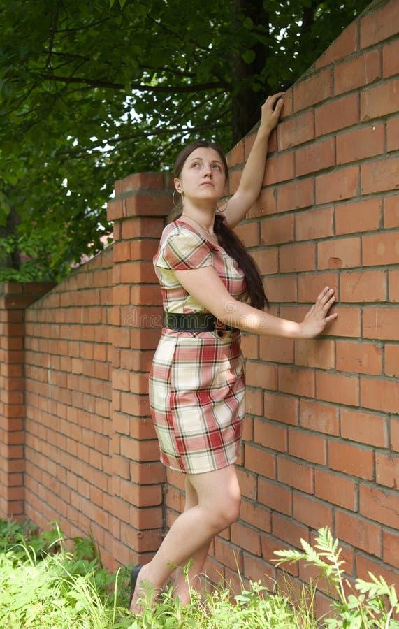 Sexy meisje dichtbij bakstenen muur stock fotografie