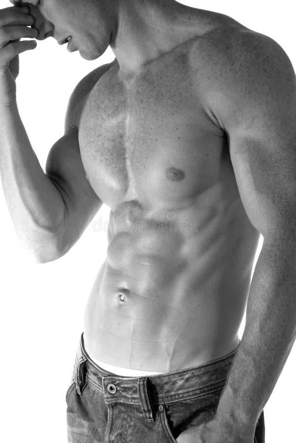 Sexy mens stock fotografie