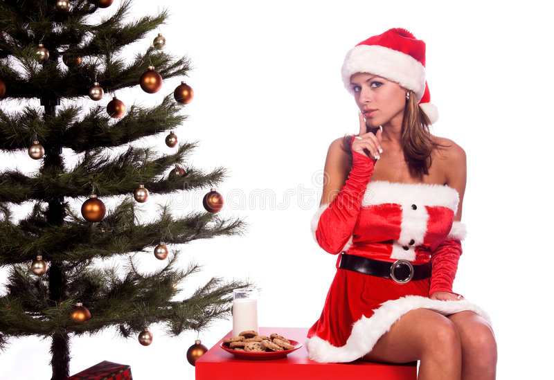 Download Mrs. Santa Royalty Free Stock Photography - Image: 1304267