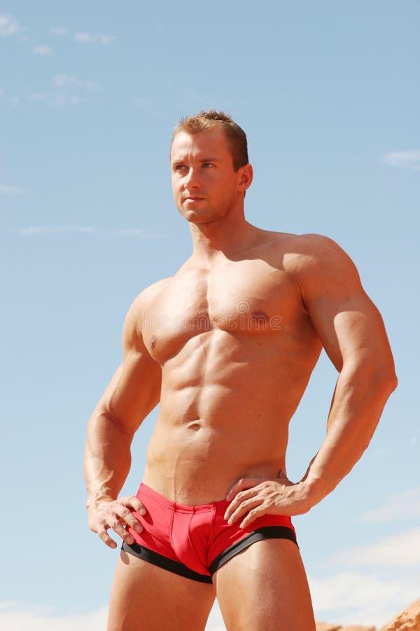 sexy muscolare del costruttore di corpo immagine stock