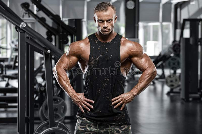 muscular man in gym, bodybuilder. Strong male torso, working out stock images