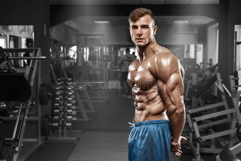 muscular man posing in gym, shaped abdominal, showing triceps. Strong male naked torso abs, working out stock photo