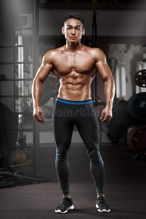 Muscular Man Posing In Gym, Shaped Abdominal Strong Male Naked Torso Abs, Working Out -6020