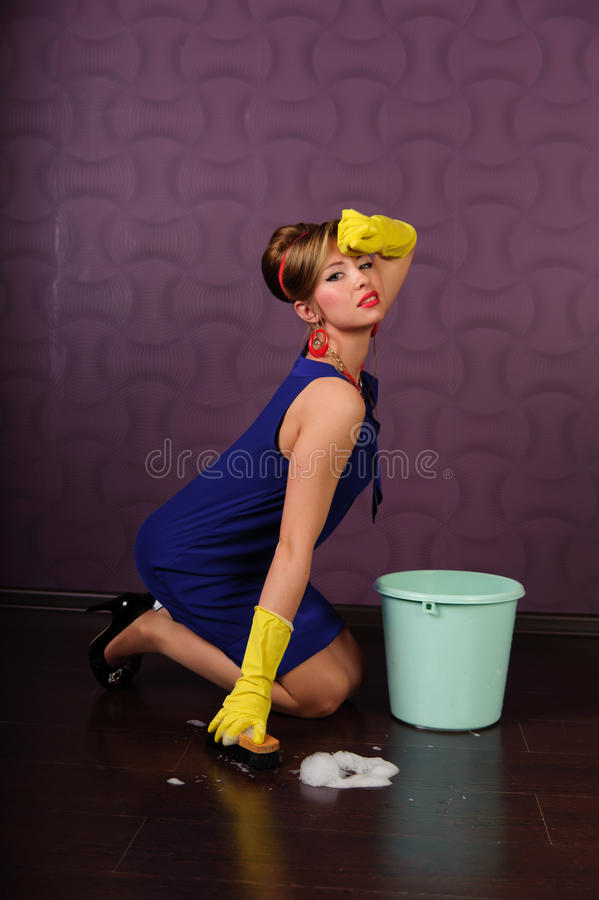 pin up housewife royalty free stock images