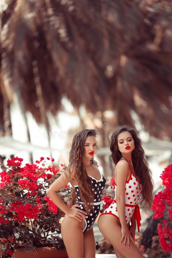Sexy Pinup girls with red lipstick makeup blowing kiss with pout lips. Summer lifestyle fashion portrait of two brunette women. royalty free stock images