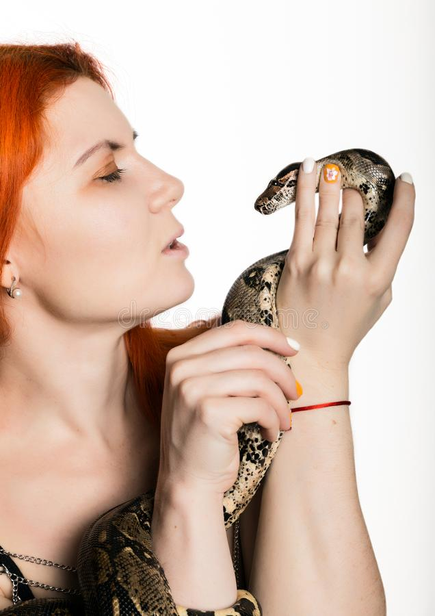 Sexy redhead woman holding snake. close-up photo girl with pygmy python on a white background. Sexy redhead woman holding snake. close-up photo girl with pygmy royalty free stock images