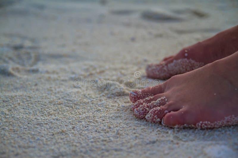 Sandy feet on the beach royalty free stock photo