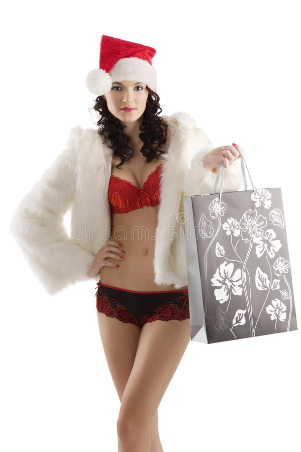 Download Santa claus shopping bag stock photo. Image of beauty - 16606152