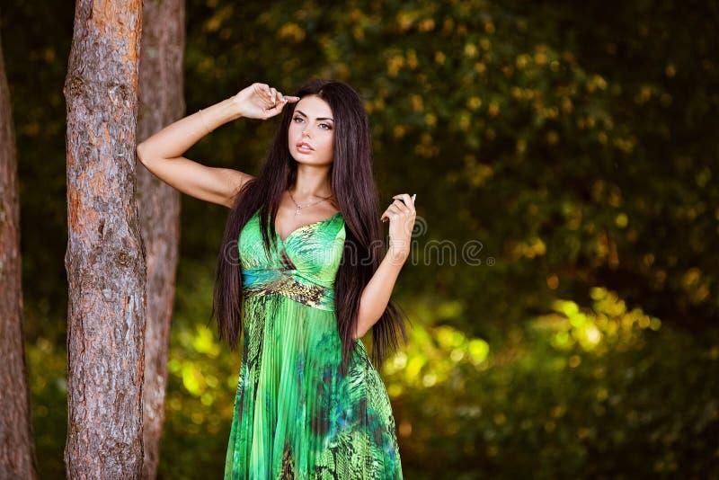 Sexy sensueel zeer mooi donkerbruin meisje in een groene kledingstribune stock afbeeldingen